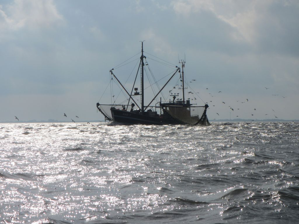 Wangerooge Watt Fischkutter